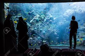 dubai uae september 30 large aquarium in hotel atlantis 1 539