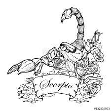 zodiac sign scorpio detailed realistic scorpio in a decorative