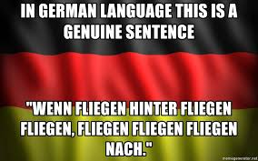 German Language Meme - in german language this is a genuine sentence wenn fliegen hinter