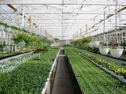 where to build prefab greenhouse u2014 prefab homes