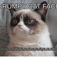 Grumpy Meme Face - grumpy cat face lolololololololololololo olol cat face meme on me me