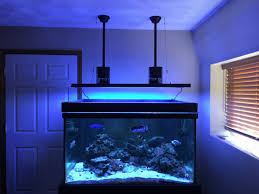 t5 lighting fixtures for aquariums my review of the aquatic life t5 hybrid reef2reef saltwater and