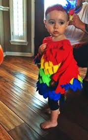 Halloween Costumes Parrots Collection Baby Parrot Costumes Halloween Pictures 99