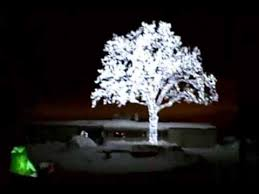 led oak tree lights up the cities sky
