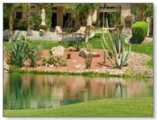 Desert Backyard Landscape Ideas Backyard Landscaping Ideas Transform Your Backyard