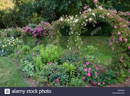 garden trellis border with roses stock photo royalty free image
