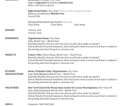 100 the sample of resume examples of resumes 13 basic
