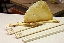 Harvesting Honey From A Top Bar Hive Horizontal Top Bar Hive Wikipedia