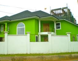 modern bright green exterior wall paint color with dark roof and