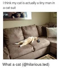Cat Suit Meme - 25 best memes about cat suit cat suit memes