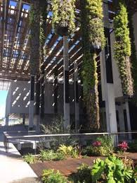 Vertical Gardens Miami - perez art museum miami gets its incredible hanging gardens art