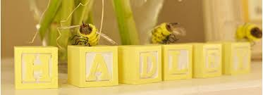 Bumble Bee Baby Shower Theme Ideas