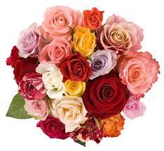 valentines day flower ideas zamp co