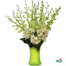 white dendrobium orchids bouquet of 19 white dendrobium orchids pret 63 00 eur floria ro
