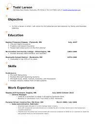 resume objective for cashier sample resume objective for retail job frizzigame objective for resume retail