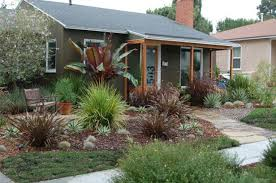 drought tolerant gardens pyihome com