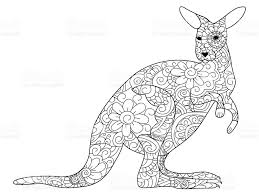 kangaroo coloring book vector for adults stock vector art