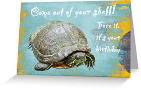 printable birthday cards with turtles turtle greeting cards card invitation design ideas free printable