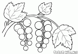 gremlins coloring pages coloring page a branch of raspberries