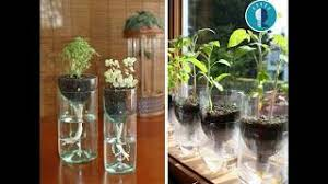 Bottle Garden Ideas Et Télécharger 50 Plastic Bottle Gardening Ideas Recycling
