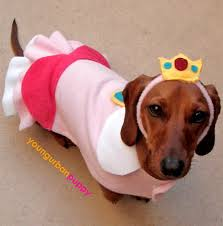 Halloween Costumes Wiener Dogs Bit Allen Dress Mario Lol