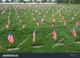 Grave Marker Flags Field Us Flags Veterans Day Riverside Stock Photo 6884947
