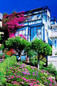 flowers san francisco house on lombard with flowers san francisco by mitchell