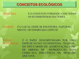 si e habitat ecologia definição estudo das relações dos seres vivos entre si e