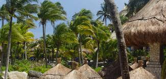 hotel review marriott aruba surf club journey the earth