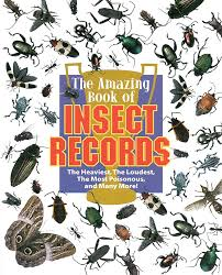 teaching about bugs insects and spiders book list scholastic