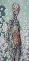 Anatomy Of Human Body Bones The 25 Best Human Skeleton Ideas On Pinterest Skeleton Anatomy