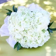 white hydrangea bouquet beautiful white hydrangea bridesmaids bouquets global