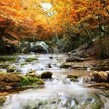 natural autumn waterfall wallpaper wall mural wallsauce usa natural autumn waterfall wall mural photo wallpaper