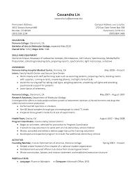 Senior Programmer Resume Optician Cover Letter Resume Cv Cover Letter