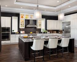Latest Trends In Kitchen Cabinets by Latest Kitchen Trends Houzz