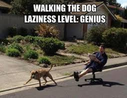 Meme Walking - walking the dog meme
