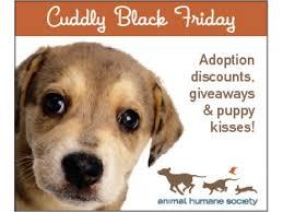 black friday pet adoption animal humane society black friday event woodbury mn patch