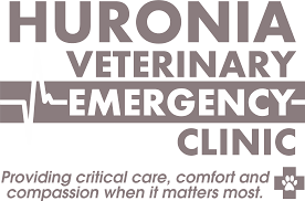 huronia veterinary emergency clinic veterinarian in barrie on