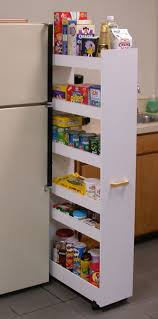 Kitchen Cabinet Pantry Ideas Best 25 Rolling Pantry Ideas On Pinterest Slide Out Pantry