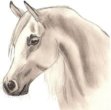 horse drawing free download clip art free clip art on