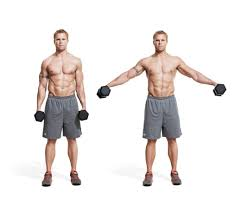 Flat Bench Db Fly The 30 Best Shoulder Exercises Of All Time