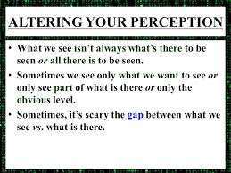 What Is Blind Perceptual Ambiguity Altering Your Perception Love Is Blind Can