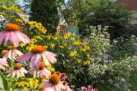 nancy lawson the humane gardener