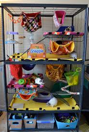 Cheap Rat Cage Best 25 Rat Cage Accessories Ideas On Pinterest Rat Toys Cheap