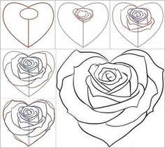 rose steps drawing pinterest rose drawings and drawing ideas