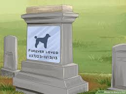 Good Backyard Pets 3 Ways To Bury A Pet Wikihow