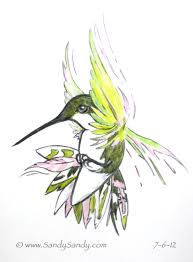 drawing everyday hummingbirds and a bear free coloring pages