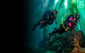 keep diving padi