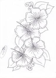 drawn hibiscus polynesian pencil and in color drawn hibiscus