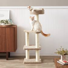 cat wall furniture purrrfect cat wall shelves for climbing cats and kitties your